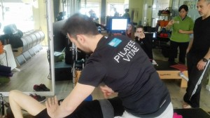 Pilates Vitae educación