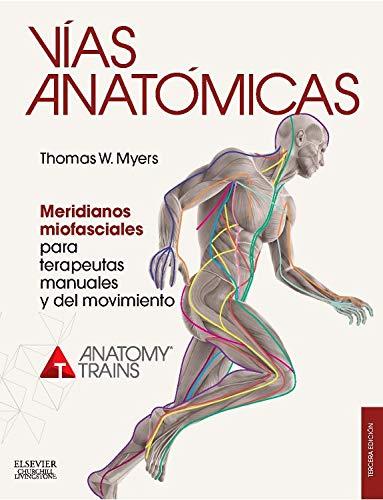 vias anatomicas