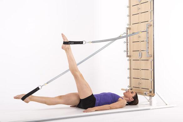 springboard-leg -springs